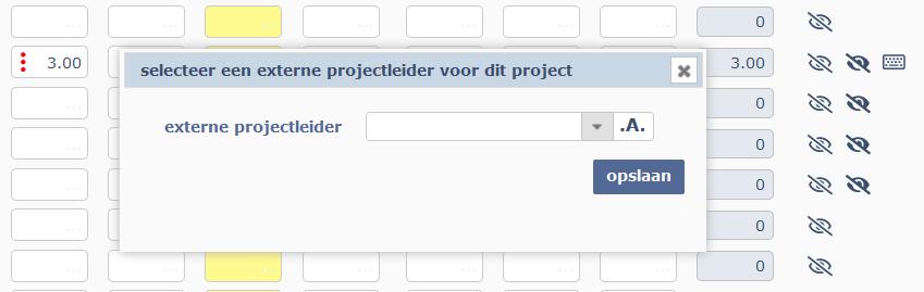 kies externe projectleider